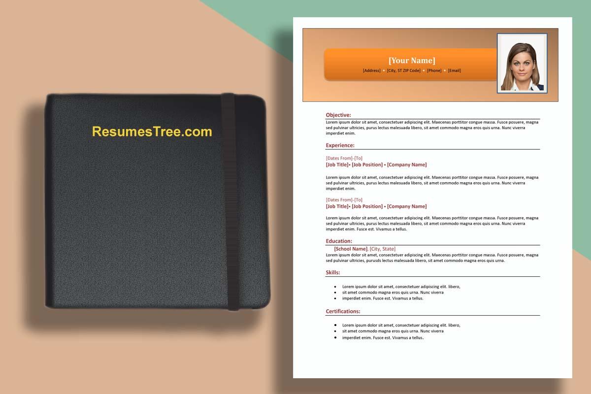 Plain Resume Template from resumestree.com